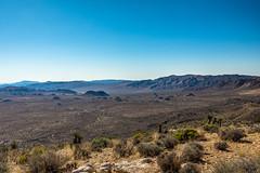 California - View from Ryan Mountain (tom_stromer) Tags: nikon d7200 ryan mountain view joshua tree national park desert