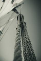 Sail (Rod Elbahn) Tags: segelschiff segeln schiff schifffahrt seil mast sail sailing ship boat sailingship rope cable