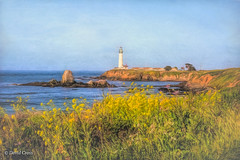 View Across Whaler's Cove (HSS) (buffdawgus) Tags: seascape lighthouse sanmateocountycoast pigeonpointlighthouse pacificcoast landscape californiacoast pacificocean topazstudio lightroom6 california pigeonpoint sanmateocounty canon70200mm28l canon5dmarkiii smugglerscove