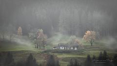 When Autumn comes home.... (Harold van den Berge) Tags: alpen alps austria autumn bomen bos fog forest haroldvandenberge herfst hiking hof house landscape landschap leefilter mist oostenrijk outdoor saalfelden salzburgerland tree canon70200lf4 salzburg at