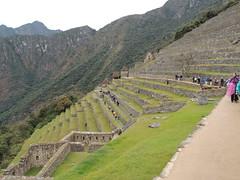 Farm terraces, Machu Picchu (Anita363) Tags: terrace terraces terracing city architecture inca incan machupicchu peru unescoworldheritagesite archaelology