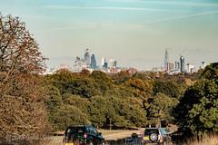City of London (Johnchess) Tags: richmondpark 2november2018 fridaybirdgroup