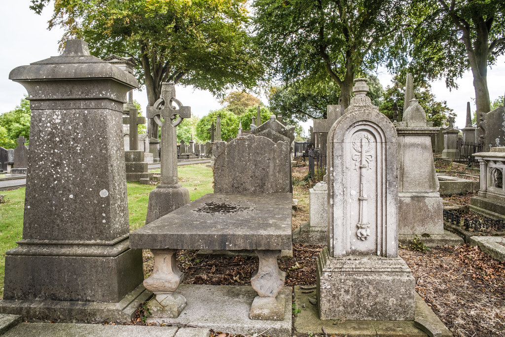 SEPTEMBER 2018 VISIT TO GLASNEVIN CEMETERY [ I USED A BATIS 25mm LENS AND I EXPERIMENTED WITH CAPTURE ONE]-144835