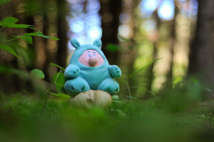 * Drôle de rencontre ! * (-ABLOK-) Tags: auvergne bois peluche jouet forest forêt sousbois bokeh nature champignon mushroom ablok régionauvergne france
