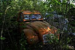 2cv camionnette Citroen (à l'oeil de verre photographie) Tags: fôret rouille épave wreck old car 36 brenne