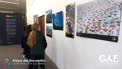 expo_colorearte-11