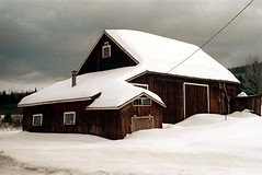 50-172 (ndpa / s. lundeen, archivist) Tags: nick dewolf nickdewolf color photographbynickdewolf 1973 1970s film 35mm 50 reel50 winter maine centralmaine snow snowy snowfall newengland ontheroad roadtrip building snowcovered house home powerline cable graysky shed garage trip vacation wintertrip wintervacation