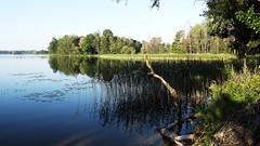 Rubikiai Lake 14 (rimasjank) Tags: lake rubikiai lietuva lithuania morning sunrise reflection
