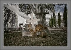 Las Tricias, Garafía, La Palma, Canary Islands (Bartonio) Tags: canaryislands cementerio cross cruz garafãa graveyard islascanarias lapalma lastricias nikkor18mm35 sonya7rii
