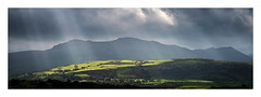 Light on Snowdonia (Dave Fieldhouse Photography) Tags: snowdonia panorama stitchedpanorama northwales wales wide mountains light crepuscularrays godsfingers fields countryside sillouettes farmland buildings clouds moody afternoon autumn lightandshade fuji fujifilm fujixpro2 telephoto wwwdavefieldhousephotographycom outdoors appicoftheweek woodland forest trees shadows 31