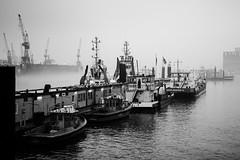 Parkplatz (Peter Glaab) Tags: dock11 elbe hamburg kräne landungsbrücken morgen möwen nebel olympus schiffe schlepper stpauli wasser werft zuiko f18 m43 blackandwhite ships blohmvoss 25mm