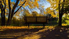Autumn vibes (Tatu234) Tags: autumn fall vantaa suomi finland sony dslr camera amateur photograph photographer photooftheday potd sunlight light sun sunny day ruska beautiful old bench