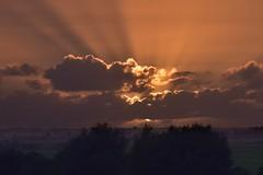 Die Sonne geht vor meinem Fenster unter; Bergenhusen, Stapelholm (Chironius) Tags: stapelholm bergenhusen schleswigholstein deutschland germany allemagne alemania germania германия niemcy himmel sky ciel cielo hemel небо gökyüzü wolken clouds wolke nube nuvole nuage облака sonnenuntergang sunset atardecer tramonto zonsondergang закат dämmerung dusk schemering crépuscule crepuscolo abend evening abends