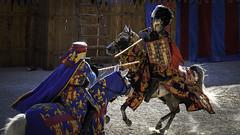 Médiévale de Monthléry-49 (fdusonchet) Tags: medieval moyen age monthlery chevalier combat armure