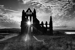 Whitby Abbey walk-by shot (The Shiba) Tags: whitby abbey ruin sunset fuji x100f walkbyshot walkby lightroom monochrome yorkshire northyorkshire heritage dracula bram bramstocker gothic gothicruin