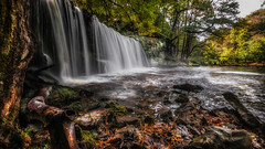 The sound of water brings solace..... (Einir Wyn Leigh) Tags: landscape waterfall nature wales uk autumn natural foliage trees colorful rocks outside outdoor walking nationalpark
