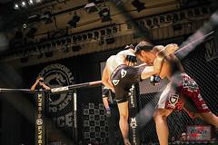 8Y9A6660-216 (MAZA FIGHT JAPAN) Tags: shooto mma grachan mixed martial arts onechampionship tokyo sakamoto pancrase deep gracie renzogracie angelalee hasegawa vvmei aokishinya fight fighting otacity mixedmartialarts cage ring boxe boxing