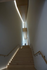 even the ordinary (rovingmagpie) Tags: california sanfrancisco sfmoma museum art summer2018 staircase stairs upstairs figures