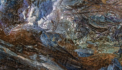 Midgard nature in a nutshell (gormjarl) Tags: bronseplassen høvåg lillesand norway surrealism