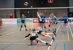 4A132444 (roel.ubels) Tags: volleybal eredivisie talent team papendal valkenhuizen sport topsport pharmafilter us tt 2018 volleyball indoor