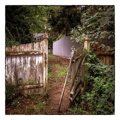 Abandoned (Timothy Valentine) Tags: 2018 1018 abandoned decay large gate friday intheneighborhood datesyearss fence eastbridgewater massachusetts unitedstates us