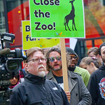 Midwest March for Animals Chicago Illinois 10-14-18 4608 thumbnail