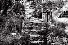 Esglaons (rossendgricasas) Tags: bw bn monochrome step girona catalonia photography photoshop photo nikon tamron