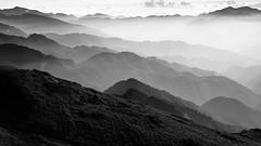 The Mountains (z8326789@yahoo.com.tw) Tags: monochrome blackandwhite bnw climbing outdoors hiking mountains taiwan