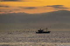 Señal de que traen capturas (josmanmelilla) Tags: barcos pesqueros pesca barco melilla mar amaneceres amanecer españa agua nubes pwmelilla pwdmelilla flickphotowalk pwdemelilla