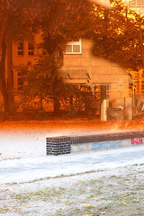 orange (Binacat) Tags: canon eos 750d digital color colorful berlin friedrichshain autumn leaves tree filter plexiglas farbenfroh herbst baum blätter orange reflection reflexion