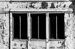 Choisis. (Adrien GOGOIS) Tags: gent belgium sony e 18105mm f4 g windows ruin black white noir et blanc monochrome deep immeuble bluiding profond abandonned abandon city ville street architecture symetry geometry af mount a6000 pz