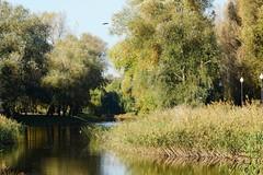 City park (Jurek.P) Tags: citypark park kępapotocka warsaw warszawa poland polska autumn water jurekp sonya77