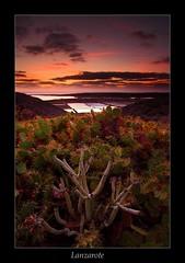 IMG_8566 (El Vibora) Tags: lanzarote largaexposicion fotografiadepaisaje landscapephotography longexposure blackcard sunset atardecer
