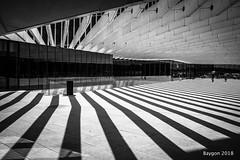 Walk the line (ericbaygon) Tags: line ligne contemporain bw black blackwhite noiretblanc noir lisbon lisboa lisbonne nikon d750 architecture beton