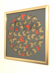 TWELVE RED BUTTERFLIES by Emo Raphiel Astoria 2018 (c) (EMO - urban art) Tags: monet spray media image photos cards buy buying people rich bank rothko vinci de leonardo litecoin ripple ethereum eye symbol bitcoin billion dollars million most expensive moss kate signed hilton paris london york new gallery hirst picasso wings fly stencil grey paint amour royal contemporary love modern artist street art gold glitter butterflies red cousin friend banksy astoria raphiel emo