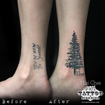 Cover Up Tree