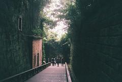 Sarushima (t14zucca) Tags: rollei35 film hillvale japan yokosuka 猿島