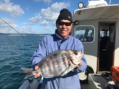 """Mike Hansell - 3lbs 15ozs Black Bream • <a style=""""font-size:0.8em;"""" href=""""http://www.flickr.com/photos/113772263@N05/44861778712/"""" target=""""_blank"""">View on Flickr</a>"""