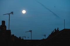 (BC.Liu.) Tags: uk moon window night