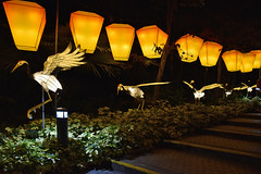 Flight towards the Phoenix (chooyutshing) Tags: crane lightedup themedlanternsset flighttowardsthephoenix midautumnfestival2018 display attractions supertreegrove gardensbythebay baysouth marinabay singapore