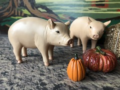 2. Hungry girls (Foxy Belle) Tags: tammy doll ideal costume old fashioned fall outside pig animal farm autumn paint by numbers farmer colonial early american pumpkin scene vintage diorama 16 scale playscale ornament
