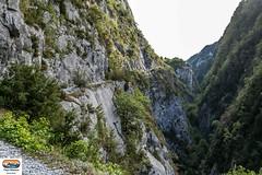 Chemin de la mâture (https://pays-basque.coline-buch.fr/) Tags: 2018 aquitainelimousinpoitoucharentes béarn colinebuch france pyrénéesatlantiques campagne chemindelamâture extérieur montagne nature sommets valléedaspe