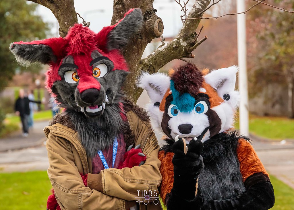 The World's Best Photos of costumes and furryconvention