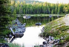 IMG_0875 (www.ilkkajukarainen.fi) Tags: lappi lapland suomi finland finlande happy life travel travelling pond lampi tukki forest metsä nature lamppi luonto kuva photo