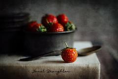 More Strawberries! (Janet_Broughton) Tags: lensbaby velvet56 texture food strawberry stilllife