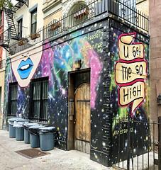 U Get Me So High by Dirt Cobain & Outer Source (wiredforlego) Tags: graffiti mural streetart urbanart publicart aerosolart manhattan eastvillage newyork nyc dirtcobain outersource