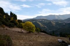 Piasca (JCMCalle) Tags: landscape paisaje pueblo town jcmcalle photohoot fhotografy photofrapher nofilter naturaleza nature naturephotography nofilters cielo piasca cantabria