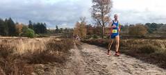 haarlerbergloop 10 km (32)