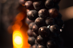 Grapes (Theo Crazzolara) Tags: food foodporn vegan delicious health balance grapes wein vine organic bokeh fire red romance romantic