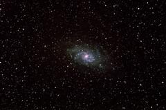 M33 Dreiecksgalaxie 10.2018 (ReppiX) Tags: m33 dreiecksnebel dreiecksgalaxy skywatcher canon650d astronomy astronomie night nightsky sterne galaxy galaxie nacht nachthimmel dunkelheit weltall weltraum teleskop